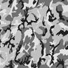 Urban Comouflage